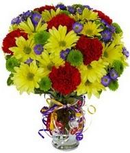 En güzel hediye karışık mevsim çiçeği  Bayburt hediye çiçek yolla