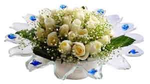 Bayburt çiçek online çiçek siparişi  11 adet Beyaz güller özel cam tanzim