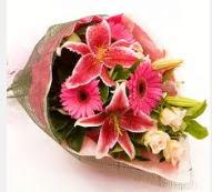 1 dal kazablanka ve mevsim çiçekleri  Bayburt internetten çiçek siparişi