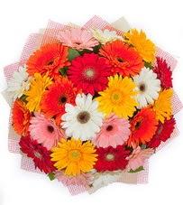 15 adet renkli gerbera buketi  Bayburt yurtiçi ve yurtdışı çiçek siparişi