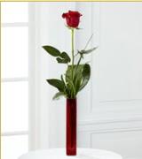 Vazo içerisinde 1 adet kırmızı gül  Bayburt internetten çiçek siparişi