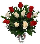 Vazo içerisinde 6 kırmızı 6 beyaz gül  Bayburt hediye çiçek yolla