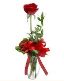 vazo içerisinde 1 adet kırmızı gül  Bayburt çiçekçi telefonları