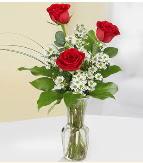 Vazo içerisinde 3 adet kırmızı gül  Bayburt çiçek satışı
