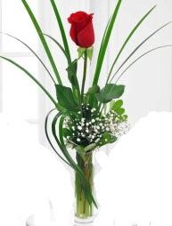 Cam içerisinde 1 kırmızı gül  Bayburt çiçek gönderme sitemiz güvenlidir