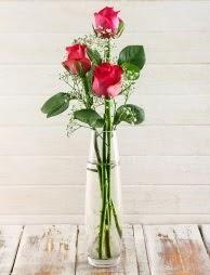 Cam içerisinde 3 kırmızı gül  Bayburt çiçek satışı