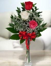 Camda 2 kırmızı 1 beyaz gül  Bayburt ucuz çiçek gönder