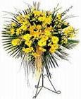 Bayburt yurtiçi ve yurtdışı çiçek siparişi  Sari kazablanka Ferforje