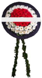mozele çiçeği  Bayburt hediye sevgilime hediye çiçek