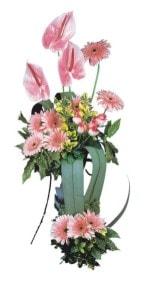 Bayburt güvenli kaliteli hızlı çiçek  Pembe Antoryum Harikalar Rüyasi