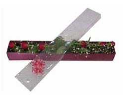 Bayburt anneler günü çiçek yolla   6 adet kirmizi gül kutu içinde