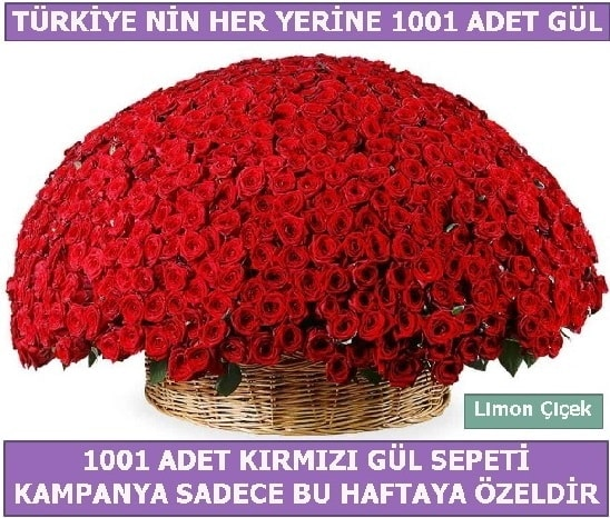 1001 Adet kırmızı gül Bu haftaya özel  Bayburt İnternetten çiçek siparişi