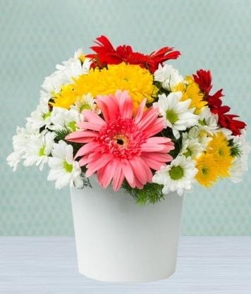 Seramik Vazoda Gelbera ve Papatya  Bayburt çiçek gönderme
