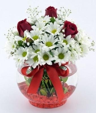Fanusta 3 Gül ve Papatya  Bayburt internetten çiçek satışı