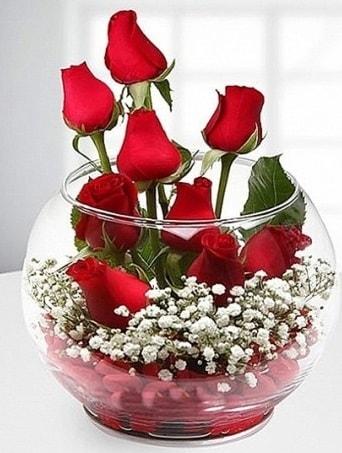 Kırmızı Mutluluk fanusta 9 kırmızı gül  Bayburt çiçek siparişi sitesi