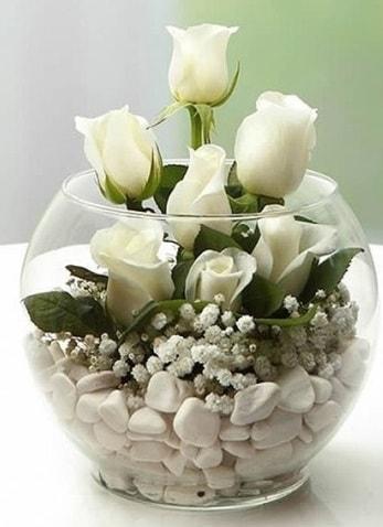 Beyaz Mutluluk 9 beyaz gül fanusta  Bayburt çiçek siparişi sitesi