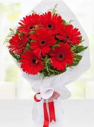 Kırmızı Gelbera Buketi  Bayburt internetten çiçek siparişi