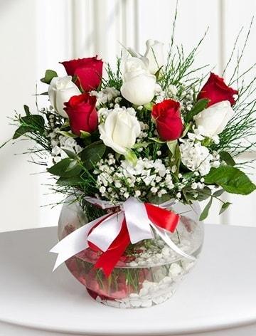 Aşk Küresi  5 beyaz 5 kırmızı gül fanusta  Bayburt internetten çiçek satışı