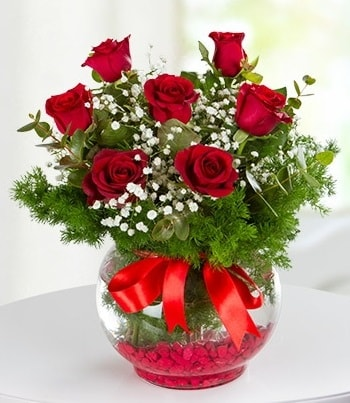 fanus Vazoda 7 Gül  Bayburt çiçek , çiçekçi , çiçekçilik