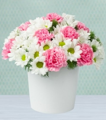 Seramik vazoda papatya ve kır çiçekleri  Bayburt çiçek siparişi sitesi