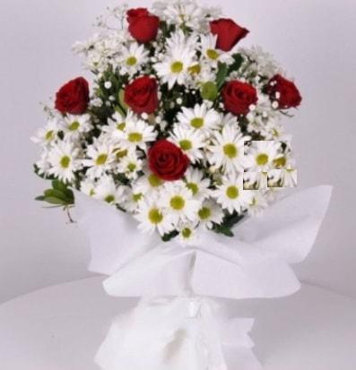 7 adet kırmızı gül ve papatyalar krizantem  Bayburt internetten çiçek satışı
