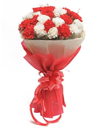 21 adet kırmızı beyaz karanfil buketi  Bayburt çiçek satışı