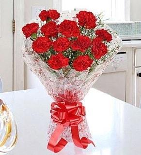 12 adet kırmızı karanfil buketi  Bayburt İnternetten çiçek siparişi