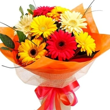 9 adet karışık gerbera buketi  Bayburt çiçek , çiçekçi , çiçekçilik