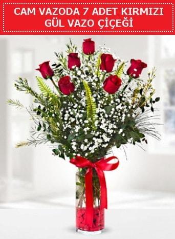 Cam vazoda 7 adet kırmızı gül çiçeği  Bayburt çiçek gönderme sitemiz güvenlidir