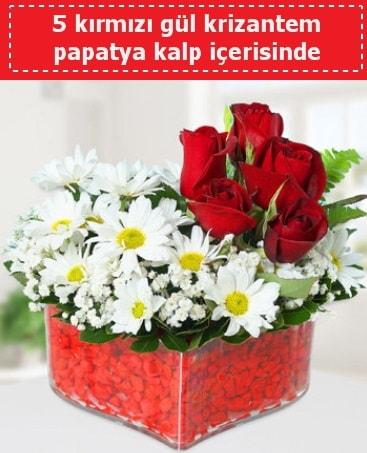 mika kalp içerisinde 5 kırmızı gül papatya  Bayburt çiçek gönderme