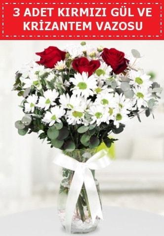 3 kırmızı gül ve camda krizantem çiçekleri  Bayburt çiçek gönderme