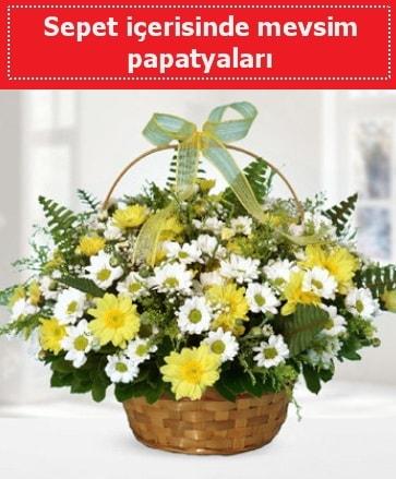 Sepet içerisinde mevsim papatyaları  Bayburt ucuz çiçek gönder