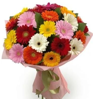 Karışık büyük boy gerbera çiçek buketi  Bayburt çiçek satışı