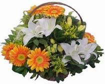 Bayburt online çiçekçi , çiçek siparişi  sepet modeli Gerbera kazablanka sepet