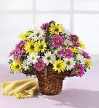 Bayburt çiçekçiler  Mevsim çiçekleri sepeti